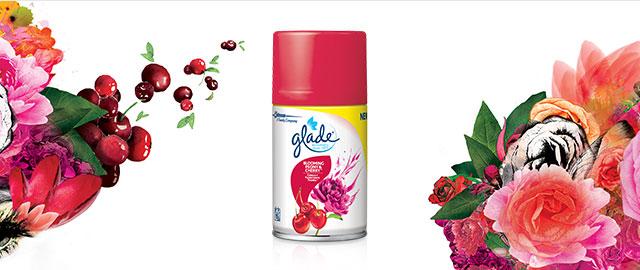 Buy 1 Glade® Automatic Spray Refill or 2 Sense & Spray Twin Refills coupon