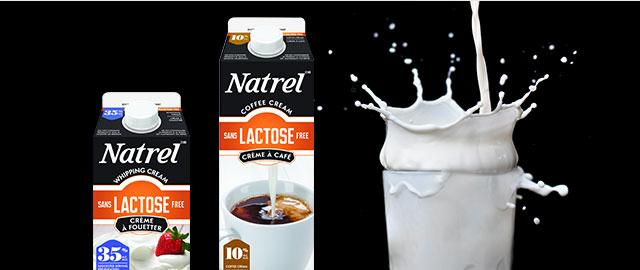 Natrel Lactose Free Cream coupon