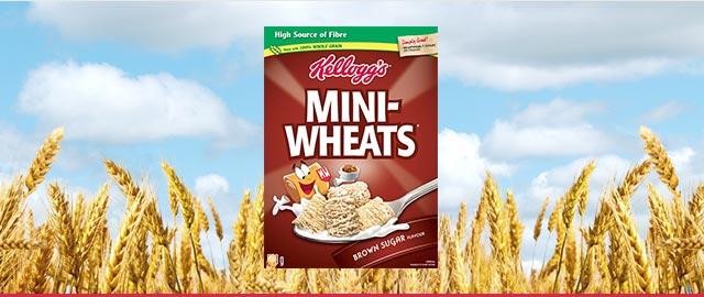 Kellogg's Mini-Wheats* Brown Sugar Flavour coupon