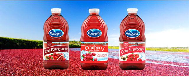 Ocean Spray Cranberry Juice Cocktail coupon